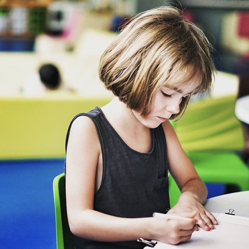 Girls, Boys, and High Achievers: The Impact of Student Composition