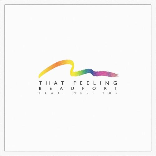 THAT FEELING - feat. Meli Sul