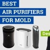 How to Find the Best Air Purifier for Mold (Top Features & Products)