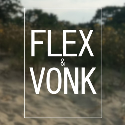 Michael Mayo - Room (FLEX & VONK REMIX)
