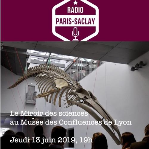 Le Miroir Des Sciences 13 Juin 2019