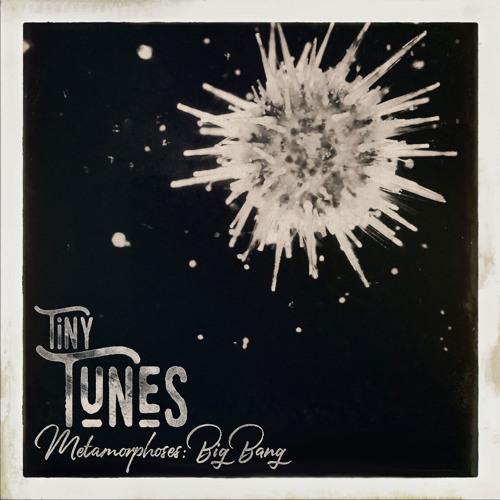 Tiny Tunes, Metamorphoses: Big Bang