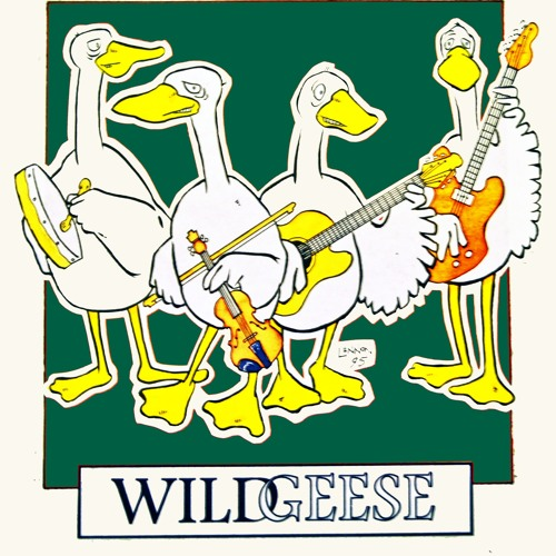 Wild Geese Ceilidh Band Live at the Ghillie Dhu