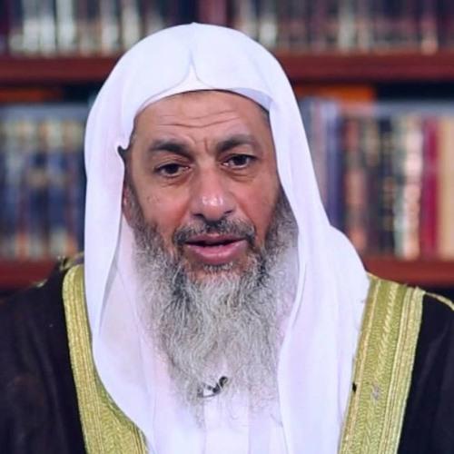 أمثال القرآن - (5) - مثل حبة أنبتت سبع سنابل - الشيخ مصطفى العدوي ...