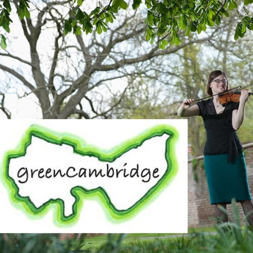 Sycamore Life - charity single for Green Cambridge