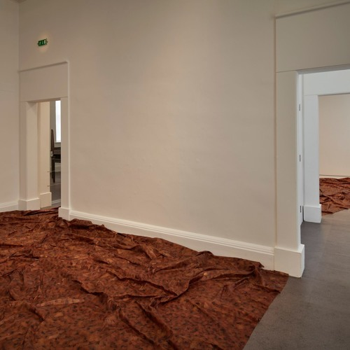 Curator's Talk: Doris Salcedo, Acts of Mourning - Karen Sweeney