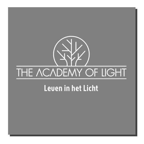 Ivo van den Heuvel over Bezield Leiderschap   The Academy of Light