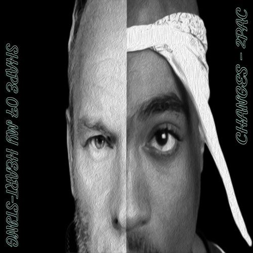 Changes - 2Pac Vs  Shape Of My Heart - Sting Mashup by DJ Pandemora