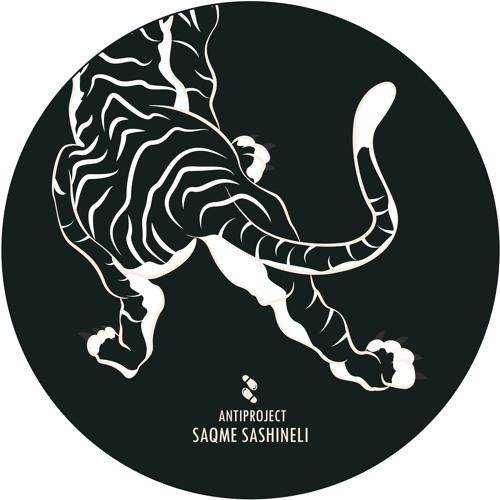 Antiproject - Saqme Sashineli (Original Mix)