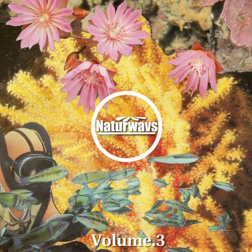 Naturwavs Vol.3