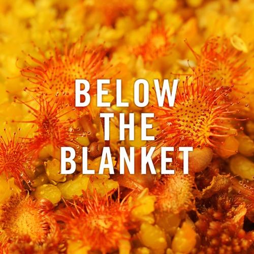 Below the Blanket