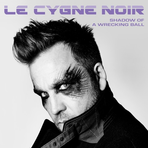 Sampler: Le Cygne Noir, Shadow Of A Wrecking Ball - OUT FRIDAY 13th SEPT 2019