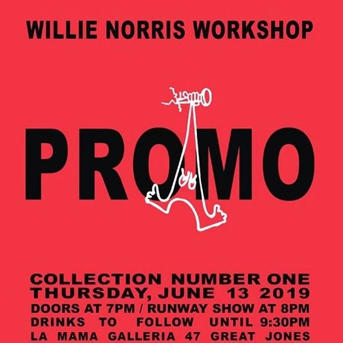 WILLIE NORRIS WORKSHIP COLLECTION ONE: PROMO RUNWAY MIX