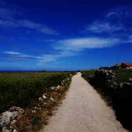 An der Küstenstraße entlang nach San Pedro da Ramallosa |  Pilger Podcast 2019