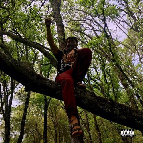 Free Fallin (feat. Chaddy)