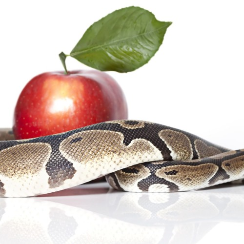 Who Was the Serpent in the Garden of Eden?