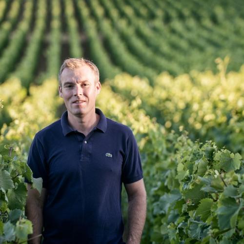 IDTT Wine 467: Benjamin Leroux Explains How Winemaking in Burgundy Has Changed