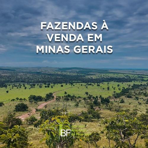 Podcast - Fazendas à venda em Minas Gerais