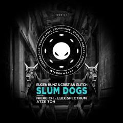Eugen Kunz & Cristian Glitch - Slum Dogs (Atze Ton Remix) [Wicked Waves Recordings]