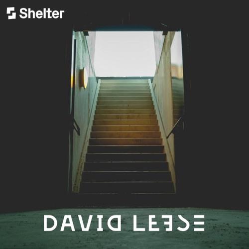 David Leese - Shelter Treatment