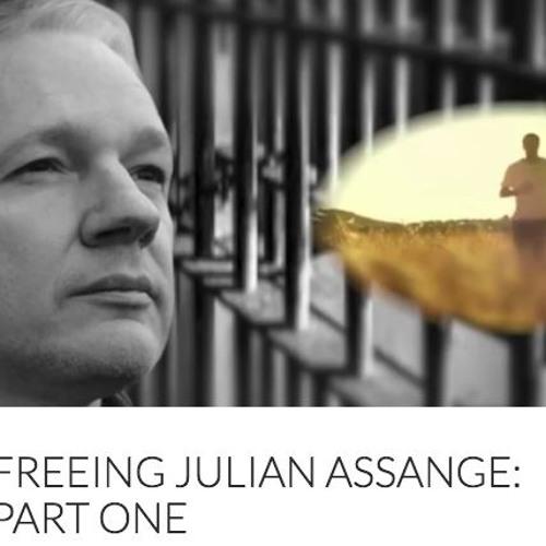 Reading of 'Freeing Julian Assange, Pt. 1' by Suzie Dawson