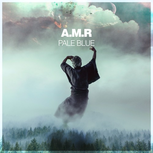 A.M.R - Voyager