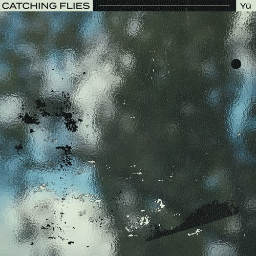 Catching Flies - Yŭ