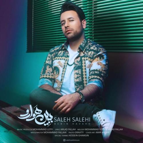 کلیپ ببین هوارو از صالح صالحی و دانلود آهنگ
