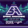 Peter Kontor vs Mario Florek at Spring Awakening Music Festival 2019 Corona Electric Beach