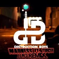 Distruction Boyz Ft. Tipcee - Madness (Lu!G Remix)[Bass House-Gqom]