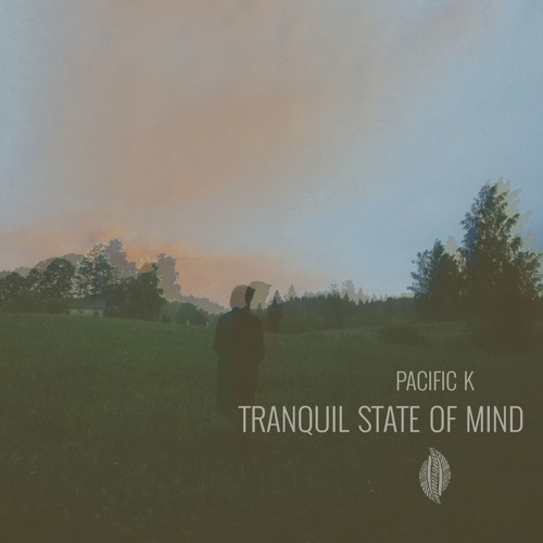 Tranquil State of Mind