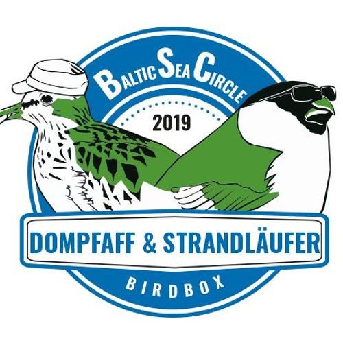 Baltic Sea Circle 2019: Team Dompfaff & Strandläufer (Folge 6 und 7)