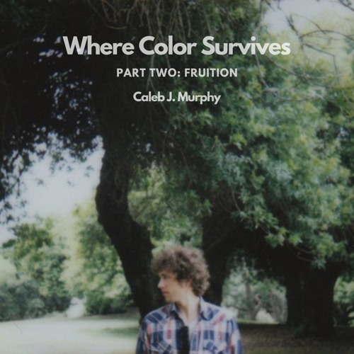 Where Color Survives, Part Two: Fruition