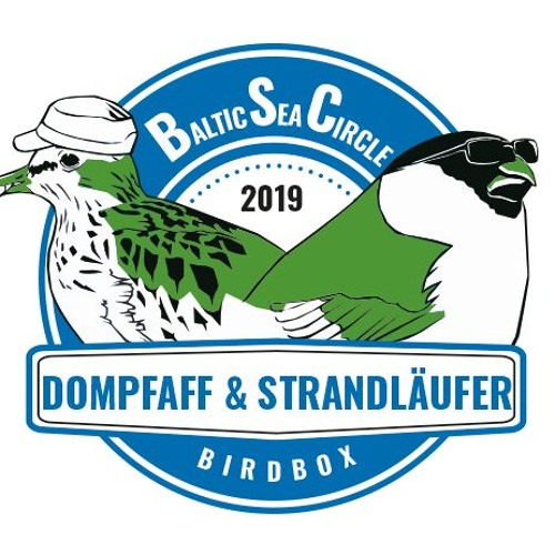 Baltic Sea Circle Rallye 2019: Team Dompfaff & Strandläufer (Folge 8)