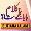 Allah Hoo Da Awaaza Aave baba bulleh shah kalam in punjabi | Punjabi Sufiyana Kalam