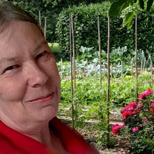 Agnès Millet 23 Juin 2019 -  Les Acides Gras