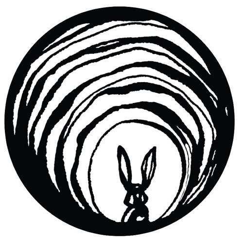 55. IBP: Daniel Ingram Down the Rabbit Hole