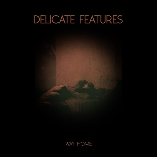 Delicate Features - Way Home