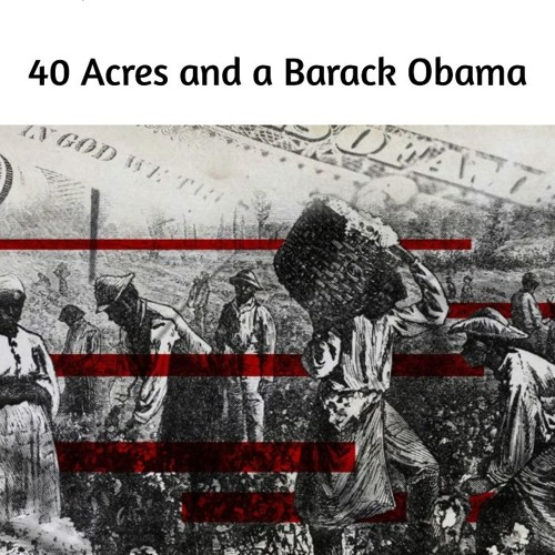40 Acres and a Barack Obama