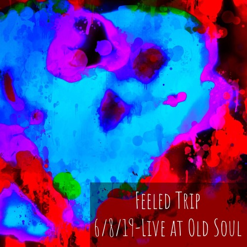 Feeled Trip - 6/8/19 - Old Soul Brewing, Fort Myers, FL