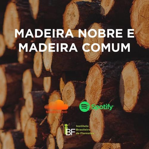 Podcast - Madeira Nobre e Madeira Comum