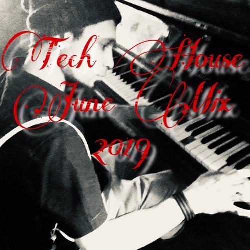 Muntean - Sommer Tech House Mix June 2019