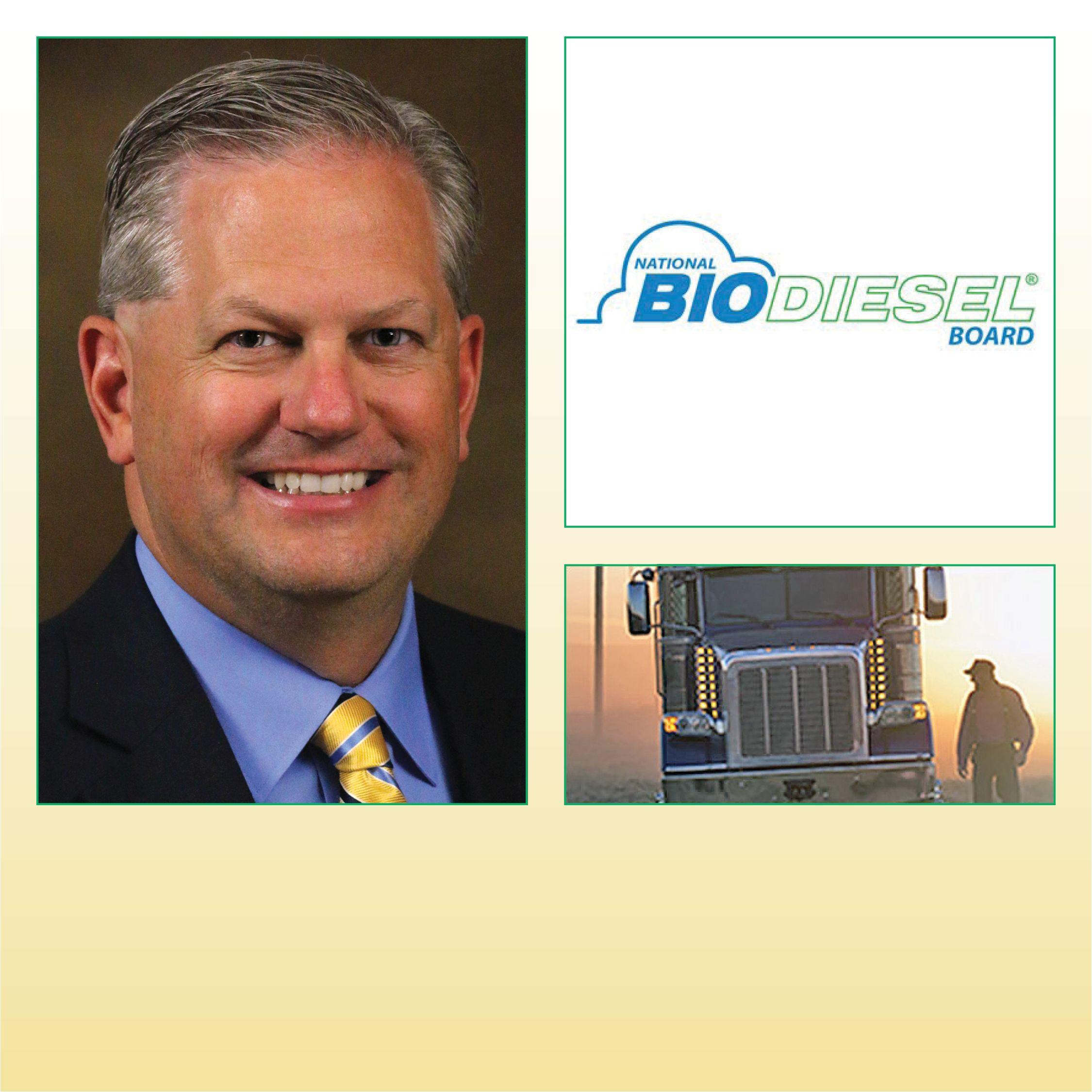 Biodiesel Issues