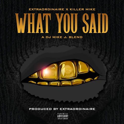 What You Said featuring Killer Mike (DJ Mike J Blend)