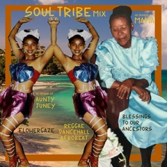 SOUL TRIBE: SUMMER MIX