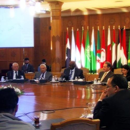 12. La integración regional árabe