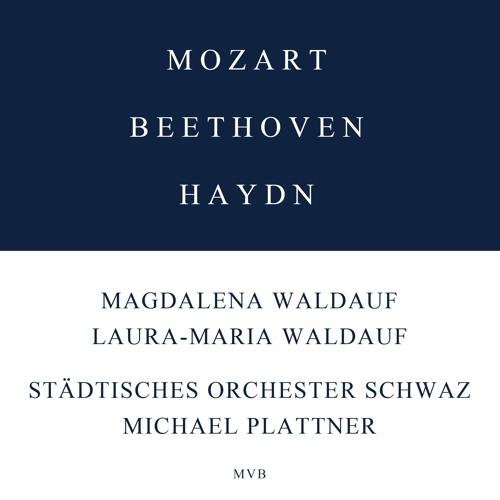 Beethoven/Orchester Schwaz/Waldauf