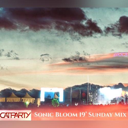 Sonic Bloom 2019 Sunday Mix