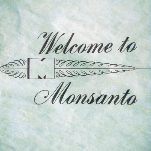 20190629 the Monsanto Photographic Exhibition - Mathieu Asselin (English)