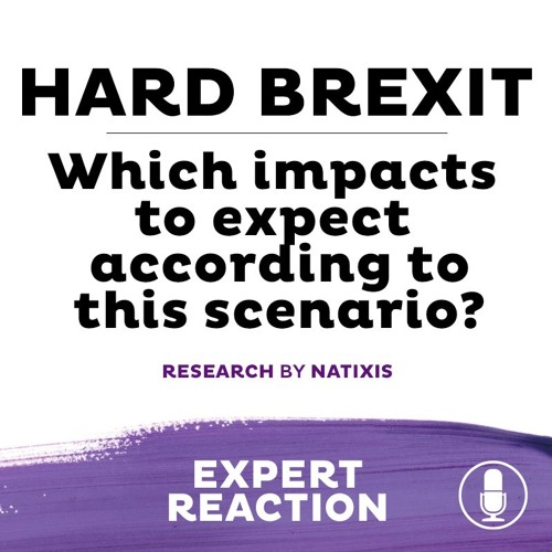 HARD BREXIT I Which impacts to expect according to this scenario?